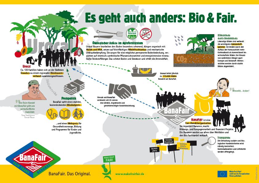 Infografik Bio und Fair
